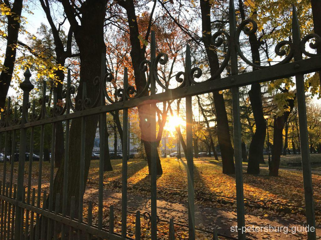 Sunrays St Petersburg Mykhaylovsky park