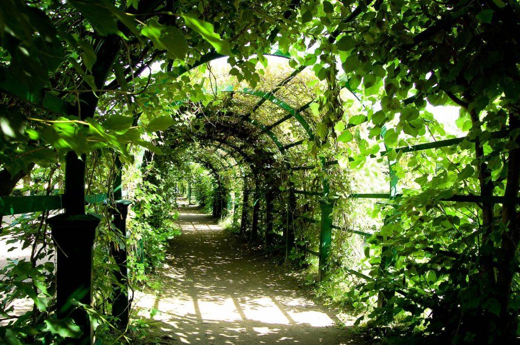summer garden in st petersburg russia