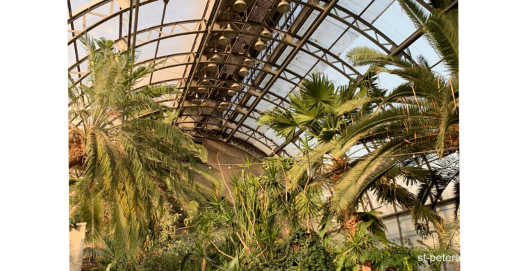 Greenhouse of the Tauride Palace in Saint Petersburg Russia